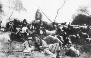 A still from Shepherd King/Gudaria Sultan (A R Kardar, 1930)