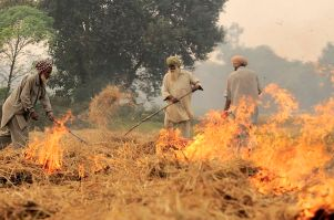 800px-np_india_burning_48_28631530934229